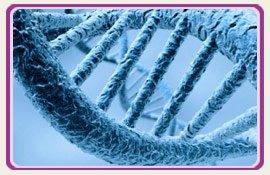 Fertility IVF DNA PlacidWay