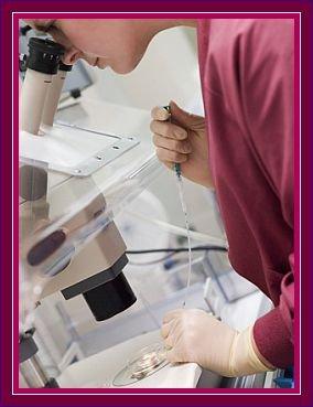 Infertility Treatment PlacidWay