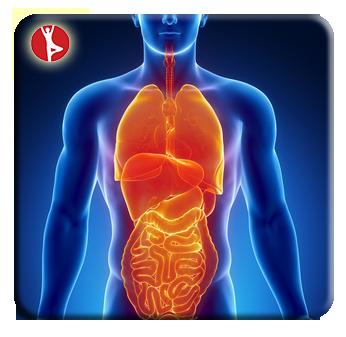 Gallbladder-Laporoscopy-Surgery-Treatment-PlacidWay