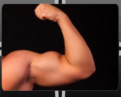 Biceps Augmentation