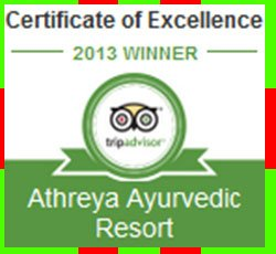 2013 Winner Certificate of Excellence