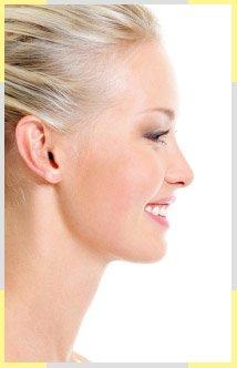 Perfect Nose Shape Image