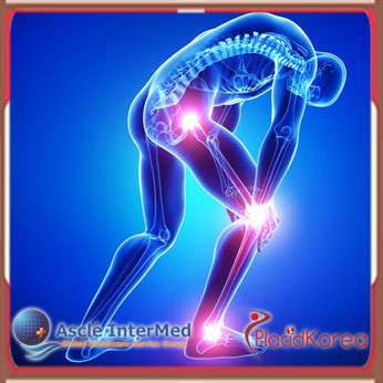 Joint Replacement Surgery in South Korea