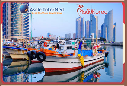 Medical Tourism in South Korea