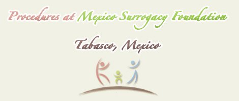 Mexico Surrogacy Foundation Tabasco Treatments