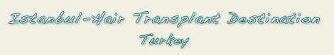 Hair Transplant Destination Istanbul Turkey