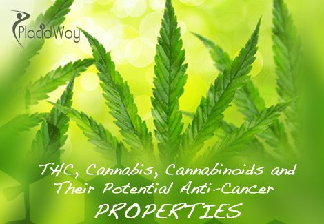 THC, Cannabis, Cannabinoids and  Their Potential Anti-Cancer  PROPERTIES