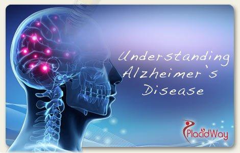 Understanding Alzheimer's Disease - PlacidWay