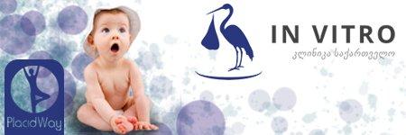 In Vitro Fertility Clinic Georgia