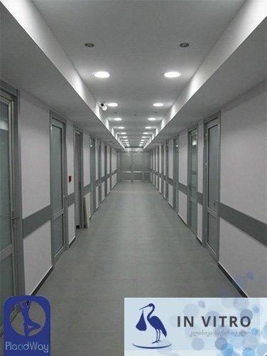 Clinic In Vitro Fertility Georgia Hallway Image