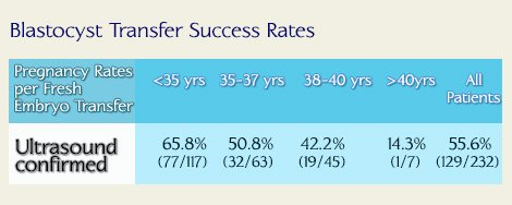 Bastocyst Transfer Success Rates in Georgia Fertility Clinic