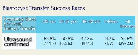 Bastocyst Transfer Success Rates in Georgia Fertility Clinic