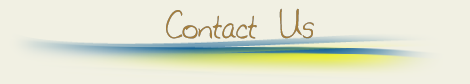 Contact PlacidColombia