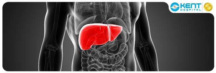 Liver Transplant Turkey