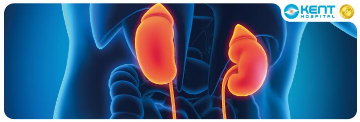 Kidney Transplant Turkey