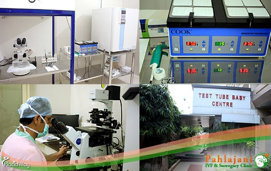 ivf surrogacy medical center india pahlajani advanced treatments raipur