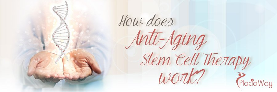 How does Anti Aging Stem Cell Therapy work - Medical Tourism