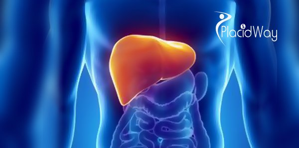 Liver transplant cost India