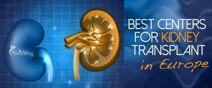Best Centers Kidney Transplant Europe