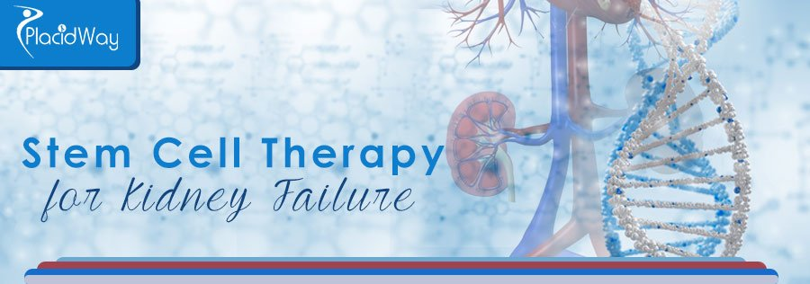 Stem Cell Therapy Kidney Failure