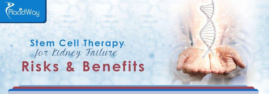 Risks Benefits Kidney Stem Cell Treatment