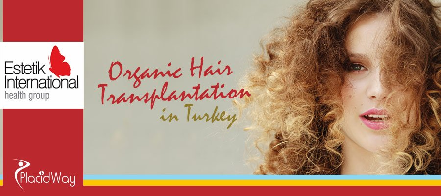 Organic Hair Transplantation package - Istanbul Turkey