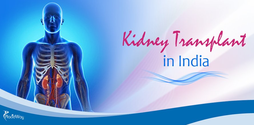 Kidney Transplant Abroad, Kidney Transplant Centers in India