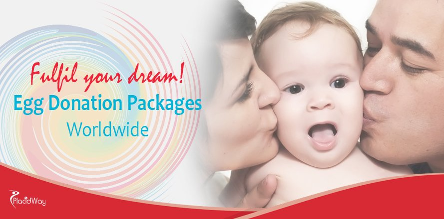 Egg Donation Packages, Fertility Treatment Abroad