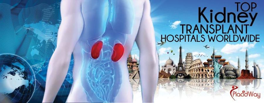 Top Kidney Transplant