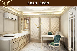 Exam Room V Past Clinic Thailand