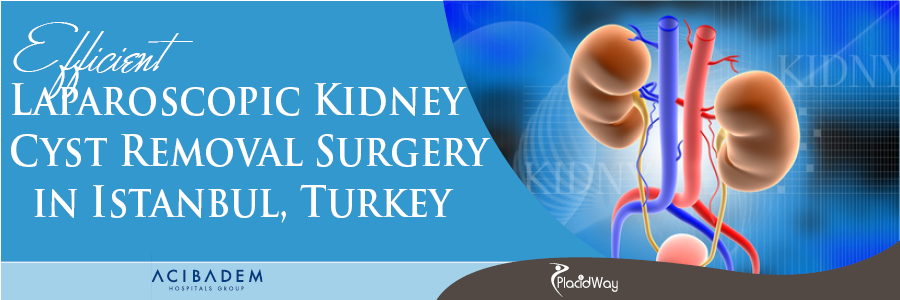 Laparoscopic Kidney Cyst Removal Surgery in Istanbul, Turkey