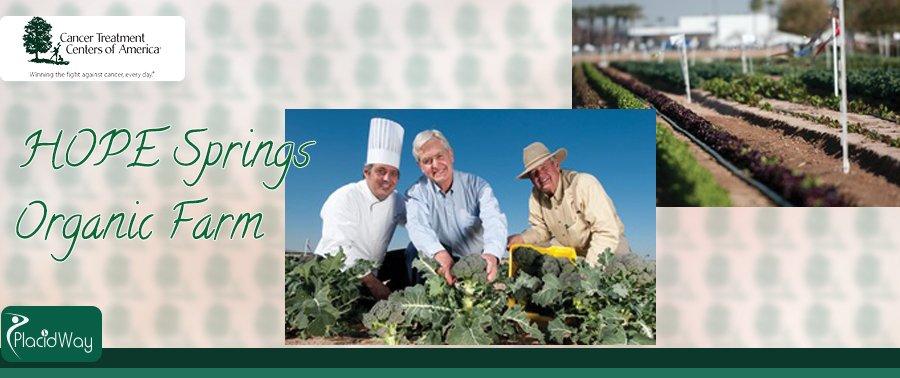 Western Regional Medical, Organic Farm, Phoenix, Arizona