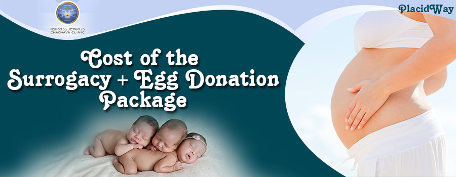 Cost of Surrogacy + Egg Donation Package in Chachava Clinic