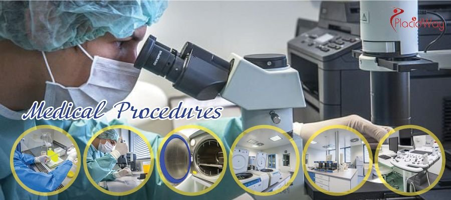 Stem Cell Therapy Procedures in Brno, Czech Republic