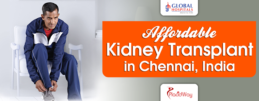 Affordable Kidney Transplant in Chennai, India