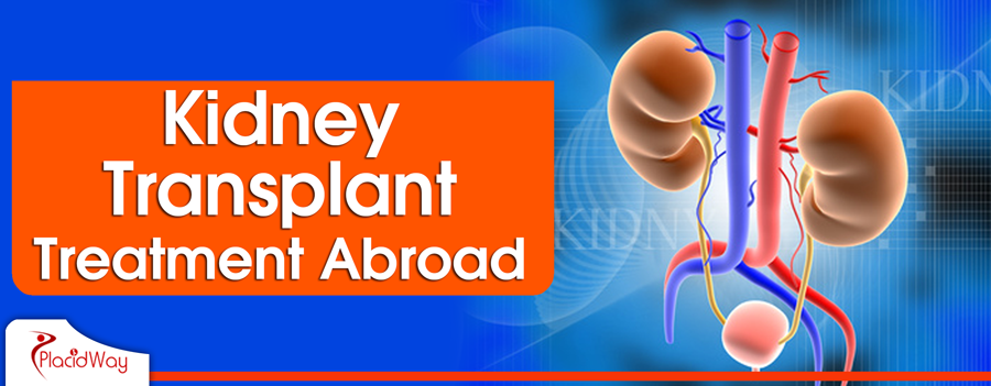 Kidney Transplant Procedure Abroad