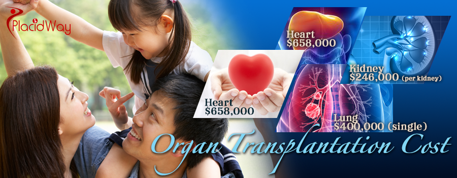 Organ Transplantation Cost Abroad