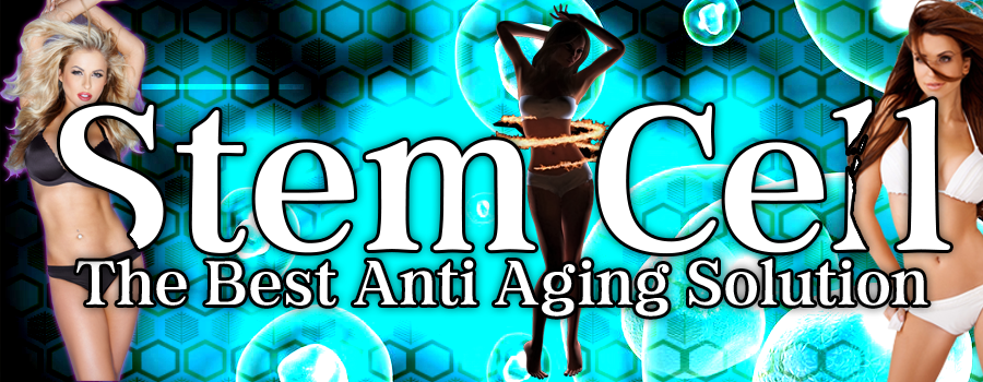 Stem Cells - The Best Anti Aging Solution