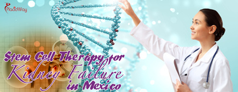 Stem Cell Therapy for Kidney Failure in Mexico