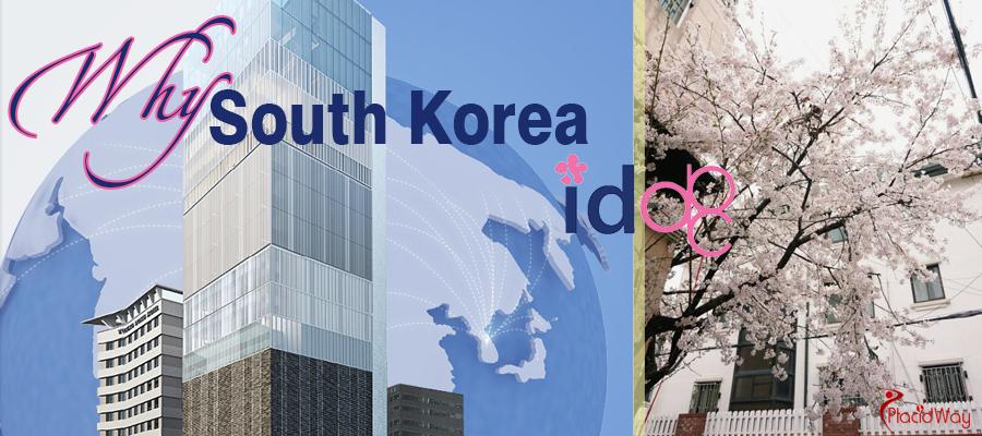 Cosmetic Surgery in Seoul, South Korea