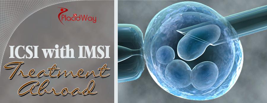 ICSI with IMSI Treatment Abroad