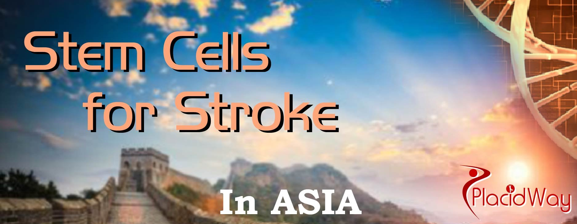 Stroke in Asia, Stem Cell for Stroke Middle East, Austral-Asia