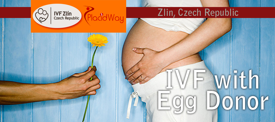 IVF with Egg Donor Package in Zlin
