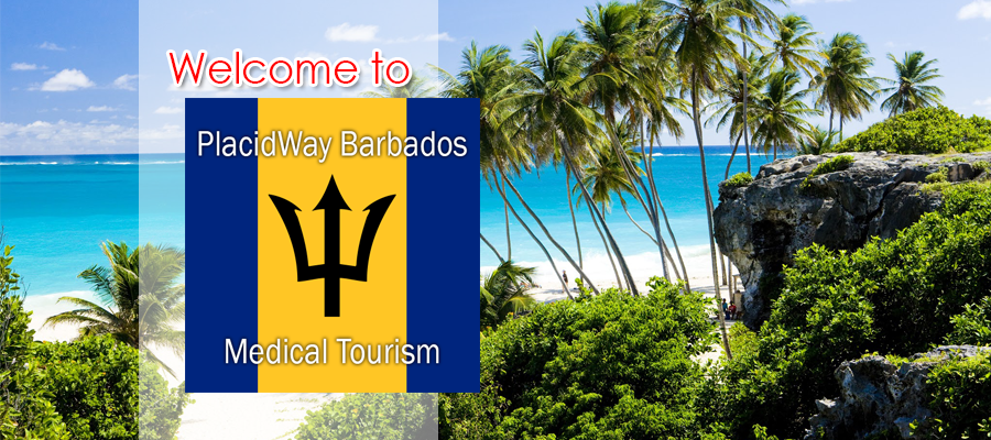 Worldwide Healthcare Options for Barbados Citizens