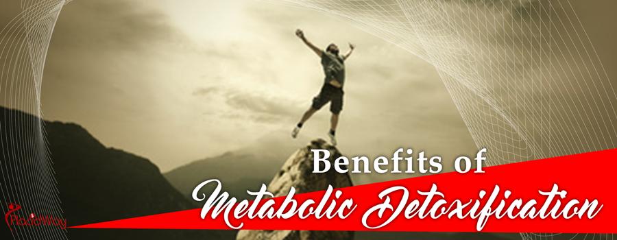 Metabolic Detoxification Costs