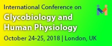 """International Conference on Glycobiology and Human Physiology"