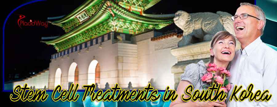 Stem Cell Therapy in South Korea