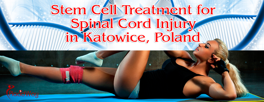 Stem Cell Treatment for Spinal Cord Injury in Katowice, Poland