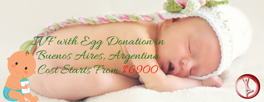 IVF with Egg Donation in Buenos Aires, Argentina Cost