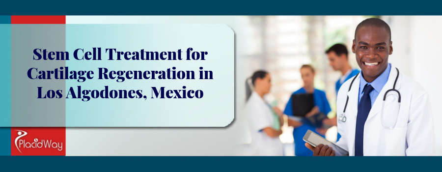 Stem Cell Treatment for Cartilage Regeneration in Los Algodones, Mexico